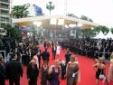 Red Carpet by Night