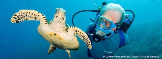 Jean-Michel Cousteau on ODYSSEA 3D