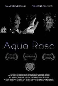 Interview with Matthew Berg and Thomas Besançon for 'Aqua Rasa' (2017) and 'Accomplice' (2018)