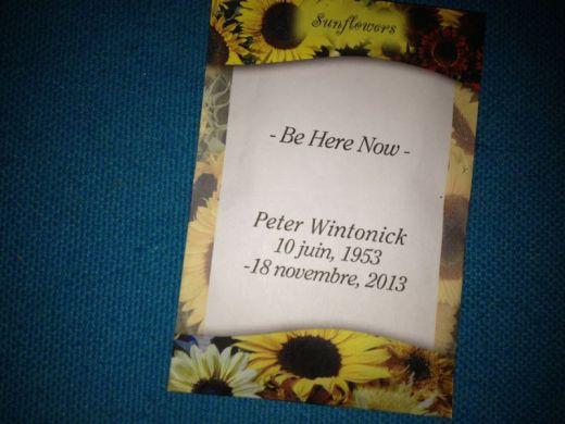 Sunflowers in Montreal Gardens Will Bloom for Peter Wintonick