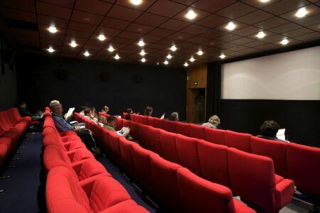 marché du film 2010 screening room