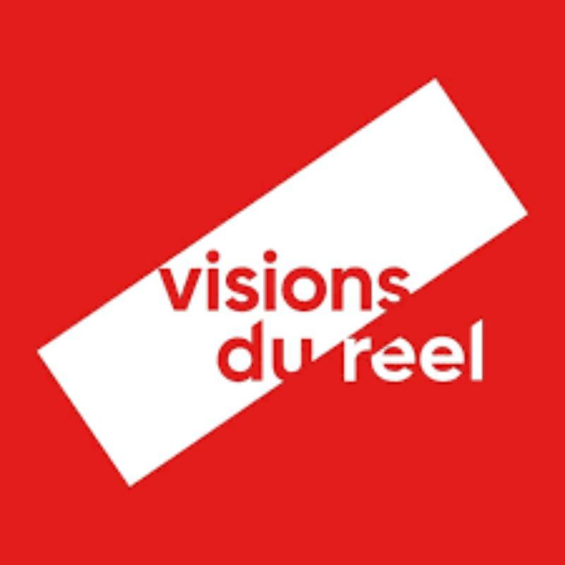 visionsdureel.png