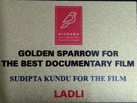 Award winners at Diorama International Film Festival, New Delhi, 14