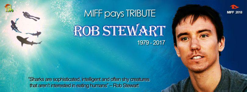 E-Flair-Retrospective-ROB-STEWART-02.jpg