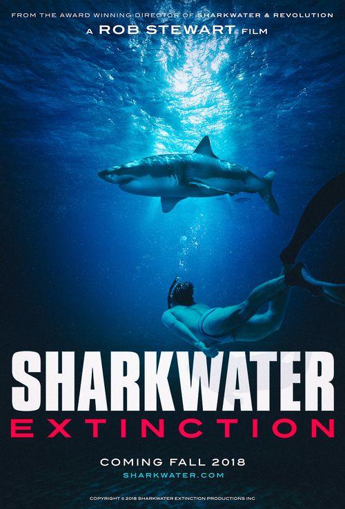 sharkawater%20500.jpg
