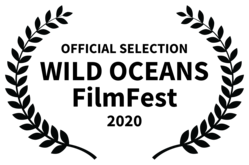 OFFICIALSELECTION-WILDOCEANSFilmFest-2020.png