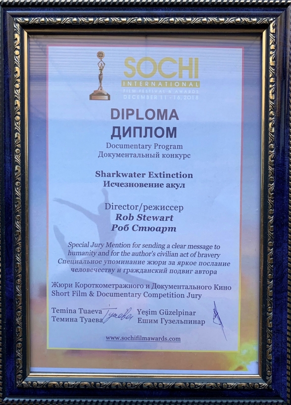 Sochi_Sharkwater%20Extinction%20Award.jpg