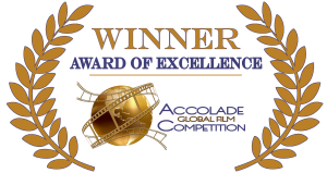 Accolade-Excellence-colorful1-300x159.png