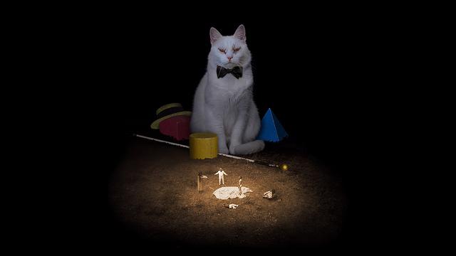 Kok-di-kitty.jpg