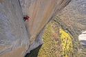 National Geographic's Pulse-Pounding Doc FREE SOLO @ TIFF