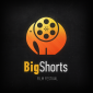 Big Shorts International Film Festival's picture